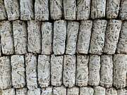 Wholesale 450 4andrdquolong California White Sage Smudge Sticks/wands Free Shipping