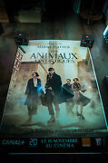 Fantastic Beasts Where To Find Them B 4x6 Ft Shelter D/s Movie Poster Original