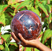 Huge 185mm Natural Red Petrified Wood Stone Metaphysical Woodstone Sphere Ball