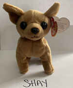 Ty Beanie Baby Tiny The Chihuahua Dog 3 Errors Rare, Excellent Condition