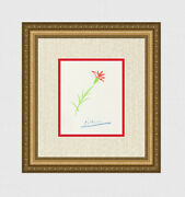 Pablo Picasso Signed 1962 Color Lithograph The Red Flower Signed Framed Coa
