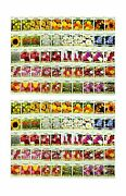 Set Of 100 Assorted Valley Green Flower Seed Packets Flower Seeds In Bulk - ...