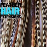 Feather Hair Extensions Mixed Naturals 40pc Grizzly Reg Width Beads Tool Hairkit