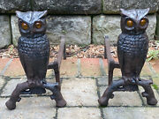 Antique Cast Iron Figural Amber Glass Eye Old Owl Statue Fireplace Andirons
