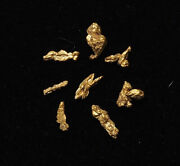 Stunning Wire Gold From Liberty Washington Intricate Specimens Lot Of 8