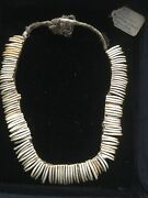 British Guiana Peccary Teeth Necklace / Neck Ornament End Of Xix Th / Xx Th