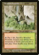 Wooded Foothills [onslaught]