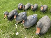12 Floating Duck Decoys Mallard Made In Italy Lot Of 12 Hunting Victor U.s.a