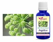 Angelica Root Oil Essential Oils 100 Pure Natural Aromatherapy Oils 3ml-1000ml