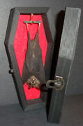 Real Hanging Bat In A Black Wooden Coffin Gothic Taxidermy Nice Quiet Pet