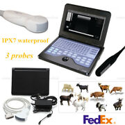 Portable Veterinary Ultrasound Scanner Machine 3 Probes Rectal Micro-convex Usa