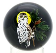 Striking Rick Ayotte Nocturnal Snowy Owl With Full Moon Art Glass Paperweight