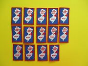 14 New Girl Scout Fun Patches Mcgs Us Census 2000 Rectangle, Red/white/blue