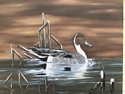 Original Northern Pintail Duck Painting On Canvas