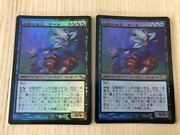 Magic The Gathering Mtg Fairy Queen Oona Of Fae Japan Edition Foil Set