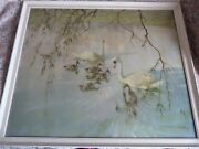 """Swans Vintage Print Vernon Ward Glass Front Frame 25"""" X 22"""" Age Of In Innocence"""