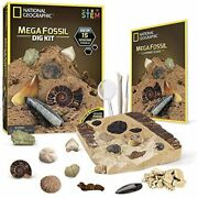 National Geographic Mega Fossil Dig Kit – Excavate 15 Real Fossils