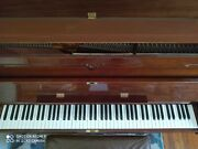 Schafer And Sons Upright Piano Cherry Maple Gloss Hardly Used Yamaha Pick Up Only
