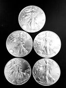Silver Eagle Lot Of 5 Gem Uncirculated Coins