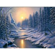 5d Full Drill Diamond Painting Owl In The Snow Picture Kits Embroidery Mural