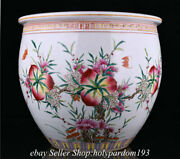 16.4 Old Chinese Famille Rose Porcelain Dynasty Peach Water Vessel Jar Pot