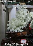 17 Rare China Natural Green Jade Carving Wealth Butterfly Peony Flower Statue