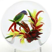 Magnum Awesome Rick Ayotte Exotic Tropical Parrot And Flower Art Glass Paperweight