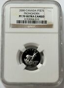 2000 Platinum Canada 600 Minted 75 Pronghorn 1/4oz Coin Ngc Proof 70 Uc