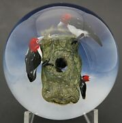 Large Wonderful Rick Ayotte Red Headed Woodpeckers Nesting Art Glass Paperweight