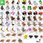 🔥 Roblox - Adopt Me Pets - Pet Wear - Toys - Cars - Trusted And Highly Rated Shop