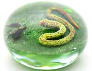 Magnum Remarkable Delmo Tarsitano Vibrant Snake And Wasp Art Glass Paperweight