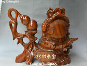 12 Huge Boxwood Gourd Golden Toad Spittor Wealth Feng Shui Beast Yuanbao Statue