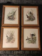 Ned Smith Field And Stream Portfolio Of Game Birds Set Of 4 Wood Framed Prints