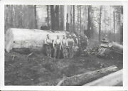 """2 Diff 5"""" X 7 Bw Photos Of Logging Company Workers And Equipment 1920-30s"""