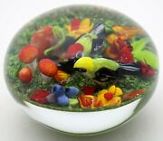 Magnum Incredible Rick Ayotte Colorful Birds And Mushrooms Art Glass Paperweight