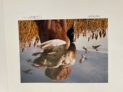 Utah Duck Stamp Print Collection