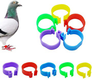 150 Pcs Chicken Bird Poultry Leg Bands Clip On Rings Duck Goose Guinea, 5 Colors