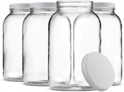 Paksh Novelty 1-gallon Glass Jar Wide Mouth With Airtight Metal Lid - Clear