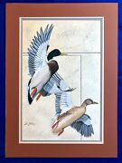 Original Dave Sellers Ducks Unlimited Artist Painting 1983 Signed Waterfowl