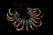 Ifugao Warrior's Tribal Used Antique Ceremonial Ritual Boar Tusk Necklace 1880