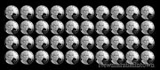 2013 S Jefferson Nickel Mint Proof Roll Unsearched Us Coins From Proof Sets