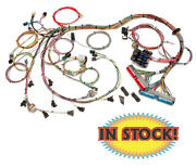 Painless Performance 60508 - Ls1 Harness For 1999-02 Gm V8 Engine