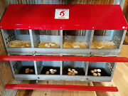 Duncanand039s 8 Hole Hen Chicken Nest. Highest Quality. Thickest Metal - Usa.