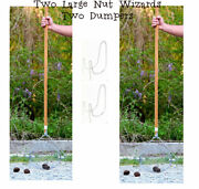 Two Holtand039s Large Nut Wizard Black Walnuts Sweet Gum Balls Tennis Apples Fruits
