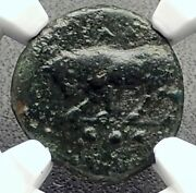 Gela In Sicily Genuine Ancient 420bc Greek Coin Bull Wheel Ngc Certified I72675