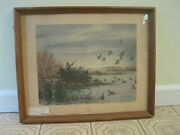 Framed 1946 Print Gunning In America - Geese - A Aiden Lassell Ripley With Bio
