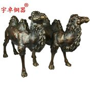 59 Cm Chinese Pure Bronze Lucky Desert Animal Camel Llama Wealth Fengshui Statue