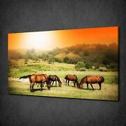 Sunset Over Wild Horses Canvas Wall Art Print Picture Poster Ready To Hang