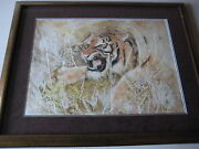 Marilyn Zapp Large Tiger Original Etching And Mono Mixed Media Framed Signed