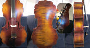 Barouqe Style Song Profession Maestro 5strings Guitar Neck 4/4 Cello 12378